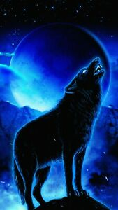 Howling Wolf Night Fantasy Blue Moon Animal Wild Wall Art Poster/Canvas Picture