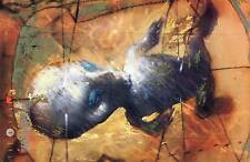 Karte X-Files Riesig Master Vision 17cm x 26cm Nr. 30