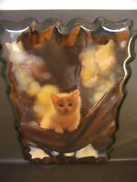 Adorable Kitten Picture On Wooden Plaque With Clear Lacquer Finish