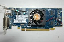 ATI AMD RADEON HD6450 CAICOS 512 MB PCI-EX16 DVI/DISPLAY PORT
