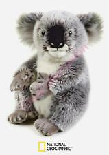 PELUCHE KOALA NATIONAL GEOGRAPHIC