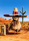 Owl Sombrero Avanti Funny Birthday Card photo