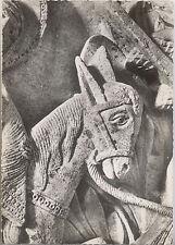 CARTE PHOTO AUTUN - CATHEDRALE - ANE DE LA FUITE EN EGYPTE