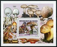 Chad 2013 MNH Scouting & Nature 1v Deluxe S/S Scouts Mushrooms Fungi Stamps