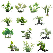 Fluval Decorative Plants - Various Sizes and Varieties
