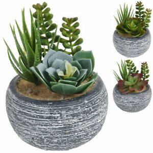 Kunstpflanze im Topf Badezimmer Tisch Deko künstliche Zimmerpflanze Sukkulenten