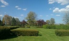 Chapel Lawn-Two burial-cemetary plots-side by side-Schererville Indiana