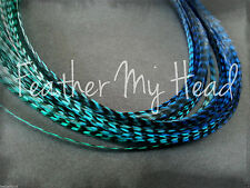Feather Hair Extensions Medium Length Grizzly Rainbow Multi Color Tye Dye Ombre