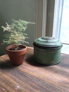 vintage antique tin green lady on lid nice patina decor storage