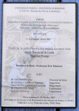 Dvd Thèse Etude de la polychromie des reliefs sur terre crue, Huaca de la Luna,