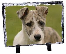 Whippet Puppy Photo Slate Christmas Gift Ornament, AD-WH70SL