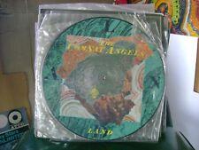 """RARE MINT PICTURE DISC~12"""" ALBUM LP~C S COMSAT ANGELS~LAND~NEW WAVE 1983"""