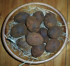 Primitive Grubby Spring Easter Eggs * set of 6