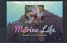 Bequia Grenadines St Vincent 2015 MNH Marine Life Mollusks 1v S/S Octopus