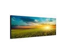 120x40cm Wiesen grün Panorama Abendsonne Sonnenuntergang Leinwand Bild Sinus