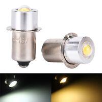 P13.5S PR2 1W Warm/White Led FlashLight Bulb  Brightness Lamps 90lm DC 18V HO#