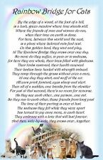 Rainbow Bridge for Cats Pet Bereavement Graveside Memorial keepsake Card Poem