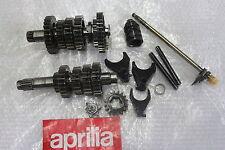 APRILIA RSV Tuono 1000 RP transmission manuelle ROTAX 6 VITESSES Mille #r7810