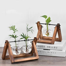 Flower Pot Glass Vase Planter Bulb for Hydroponics Plants+Wooden Stand for Decor