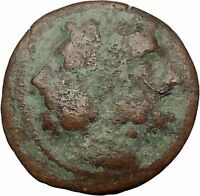 PANORMOS in SICILY 240BC JANUS and WREATH Authentic Ancient Greek Coin i41384
