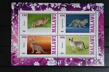 Katzen 32 cats Chats Tiere animals pets Fauna Block KB sheets postfrisch ** MNH