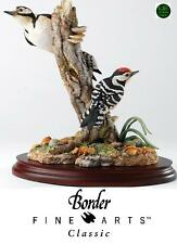 Border Fine Arts Classic Birds Different Points Of View