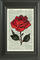 ORIGINAL - Red Rose on Vintage Dictionary Page Art Print - Wall Hanging- 194D