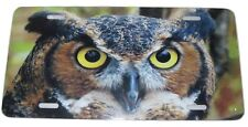 Great Horned Owl License Plate 6 X 12 Inches Aluminum New Made In The USA