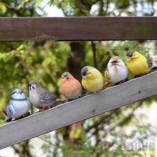 Set of 6 Lifelike Resin Birds Model Figurine Room Garden Outdoor Decoration