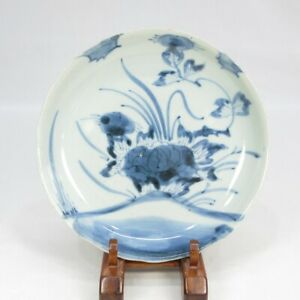 C473: REAL Japanese plate of OLD KO-IMARI blue-and-white porcelain ware in 18c
