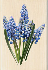 FLOWER BLUE BELLS Photo Real Wood Mounted Rubber Stamp INKADINKADO 60-00607 New