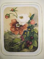 Flores.Litografia original.Lemercier.Paris circa 1850-60