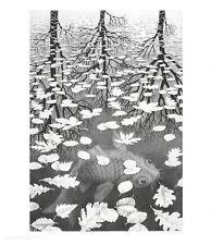 MC Escher Drei Welten Poster Kunstdruck Bild 65x55cm