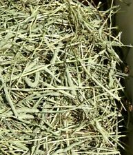 Great Fresh Timothy Hay! Great For Rabbits, Guinea Pigs Get 2 Bales! Get 6 lbs