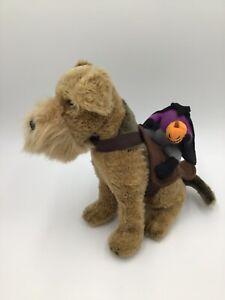 Headless Horseman Rider Dog Halloween Costume Sz S