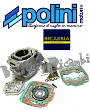 6339 - ZYLINDER POLINI DM 60 APRILIA 125 PEGASO ROTE ROSE RS EXTREMA RX R SPORT