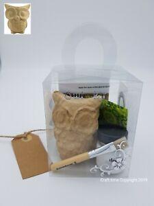 Decopatch Kit, Owl Craft Kit