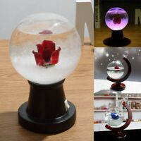 Weather Forecast Rose Storm Glass Crystal Drop Globe Wooden Base Decor Xmas Gift