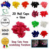 New Cat Nail Caps Soft Gel Pet Paws Claw Covers 20pcs Blue Clear Pink AU SELLER