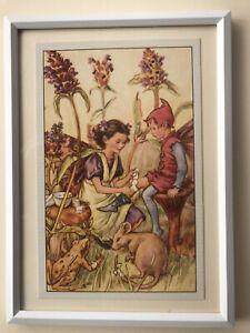 Flower Fairies framed print- Self Heal Fairy -Cicely Mary Barker 1948