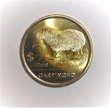 2011 Uruguay 2 pesos Capybara animal wildlife coin