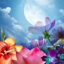 MOON FLOWER CONCENTRATED PERFUME oilSPICY FLORAL, Anise,ROSES, LILIES, CINNAMON