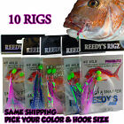 10 Snapper Flathead Bait Fishing Pre Made Flasher Rigs Tied Leader Paternoster