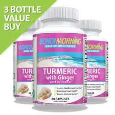 Turmeric with Ginger & Bioprene - High Potency for Maximum Pain Relief. 3 x 60