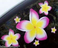 20 TRI-COLOUR Frangipani Car Stickers  Plumeria Flowers