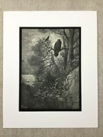 The Eagle and Magpie Bird La Fontaine Fables Story Genuine Antique Print