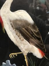 victorian style Stork Egret Bird Made From Small Feathers And Painted