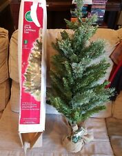 3ft Traditions Pre-lit Cashmere Tree Christmas 3' Green Pine Needles Indoor