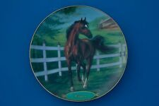Champion Thoroughbreds by Susie Morton - set of 8 beautiful Champions! (plates)