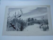 RARE STOW WENGENROTH Listed Artist Fine Art Print Long Island NY Signed 1953 VTG